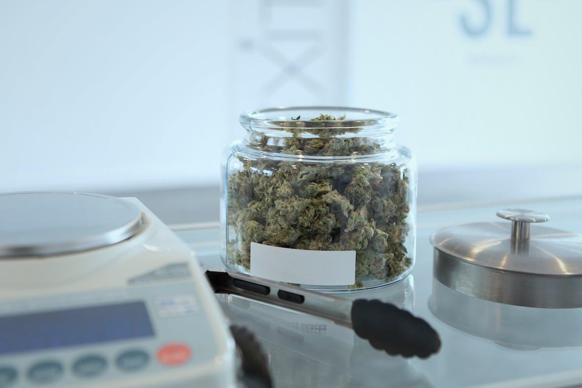 Investment-Chancen in der Cannabis Pharmazie