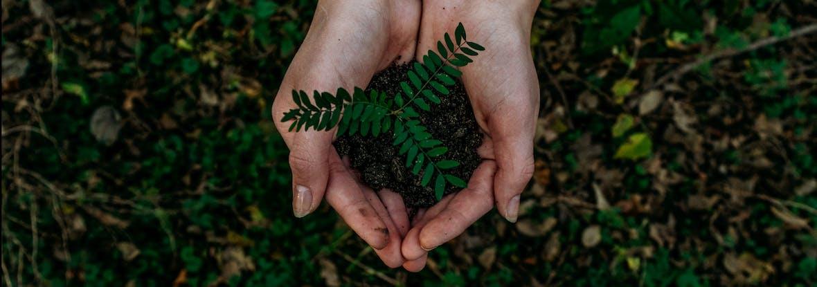 """ESG-Kriterien: Nachhaltigkeit """"Must-have"""" für Private Equity"""