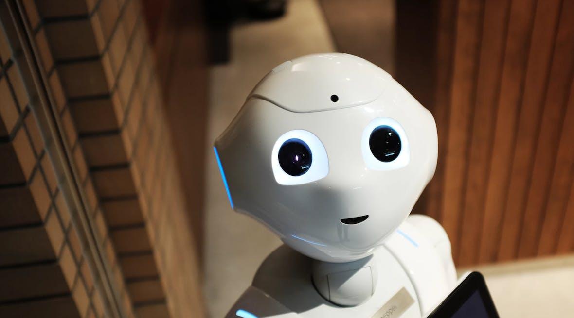 Die Lieferroboter dieses Startups werden getreten – den CTO stört das nicht