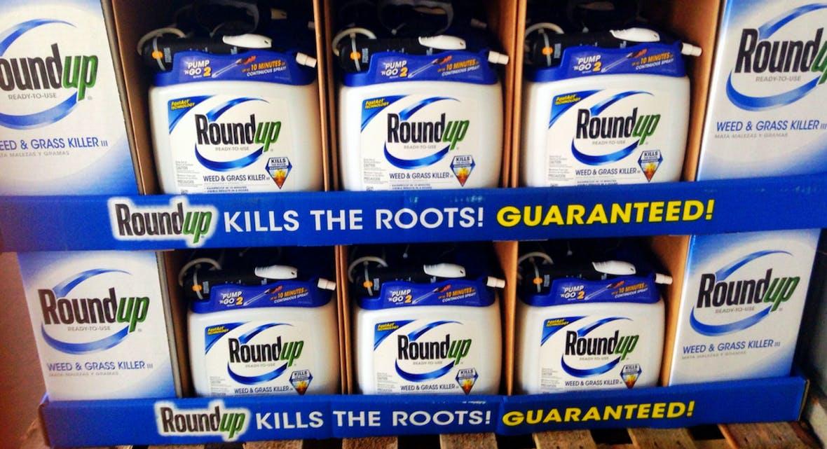 Bayer-Tochter Monsanto in Bedrängnis: Hunderte Klagen sind zulässig