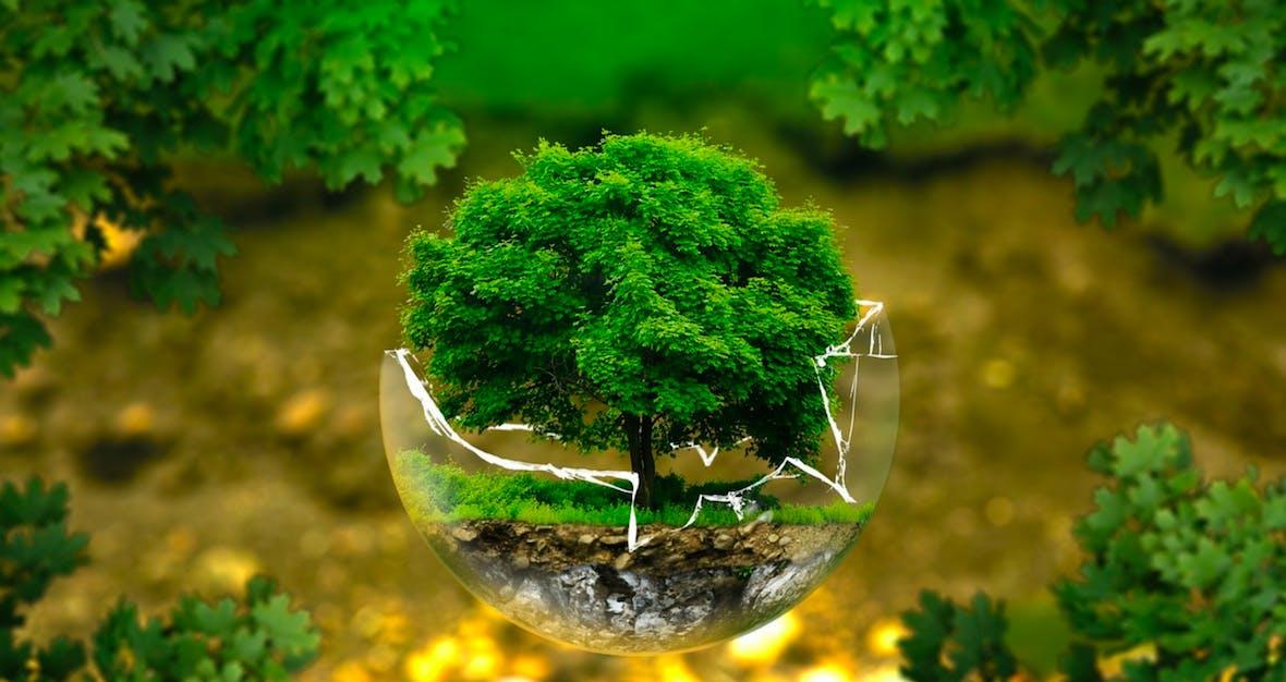 Regulatorik treibt nachhaltige Kapitalanlagen an