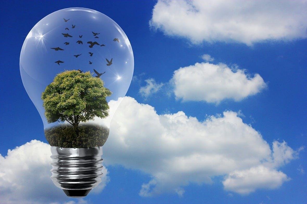 Umwelt, Soziales, Unternehmensführung: Was Nachhaltigkeit wirklich bedeutet