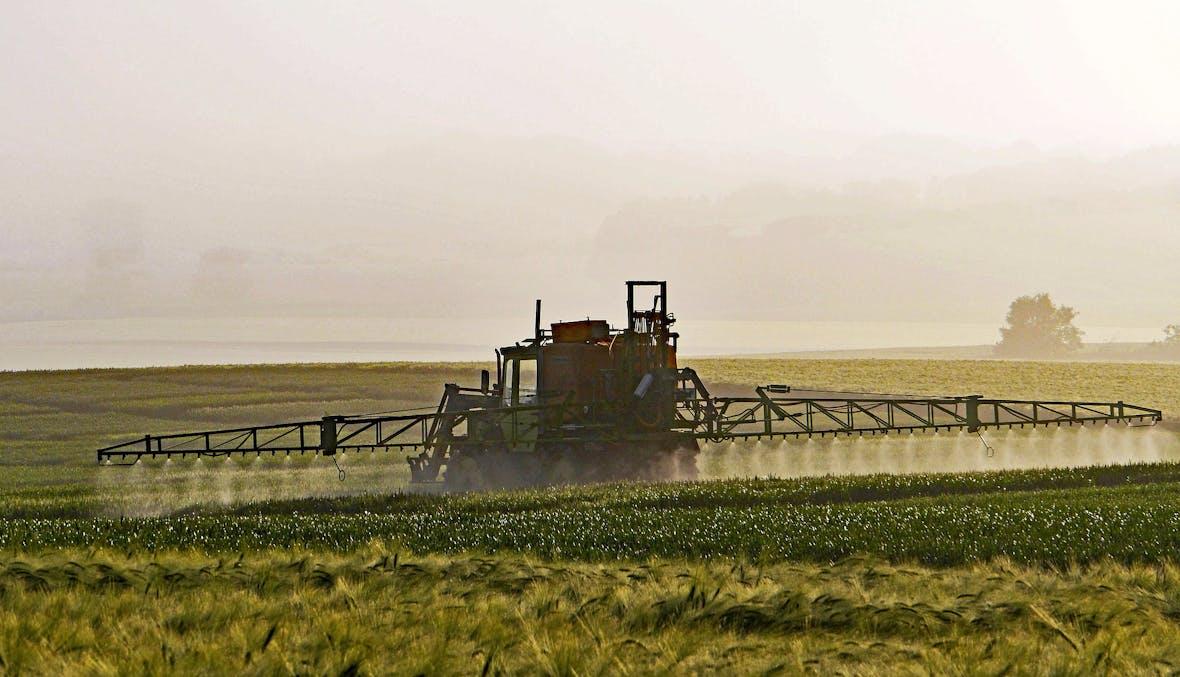 Monsanto und Bayer können Glyphosat-Urteil nicht kippen