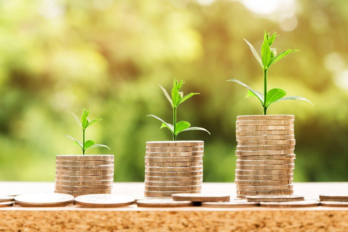Der grüne Anleihemarkt wächst schnell