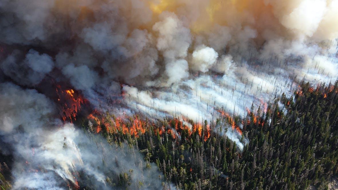 Wie die Erderwärmung unsere Gesundheit gefährdet