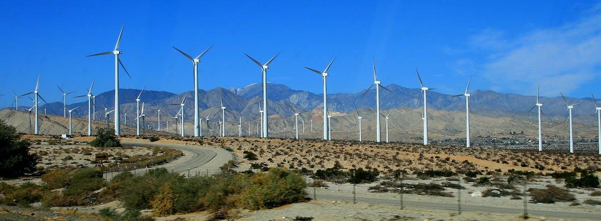 Die besten Fonds: Aktien Umwelt/Klima/Neue Energien