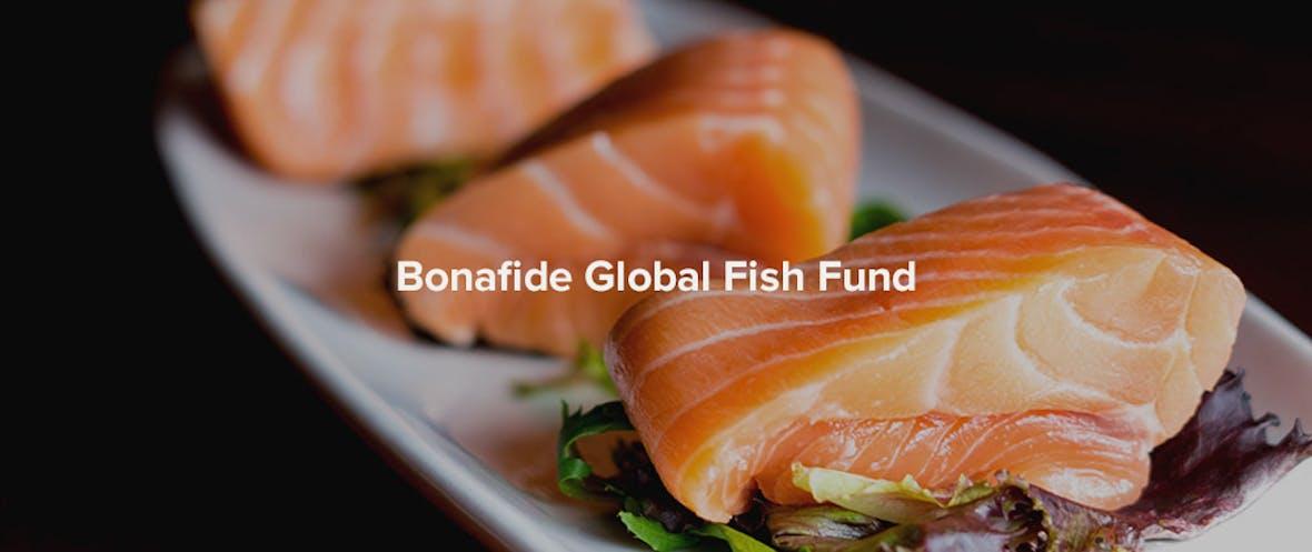 Norwegen: kurzsichtig gegen weitsichtig - Bonafide per Januar 2018