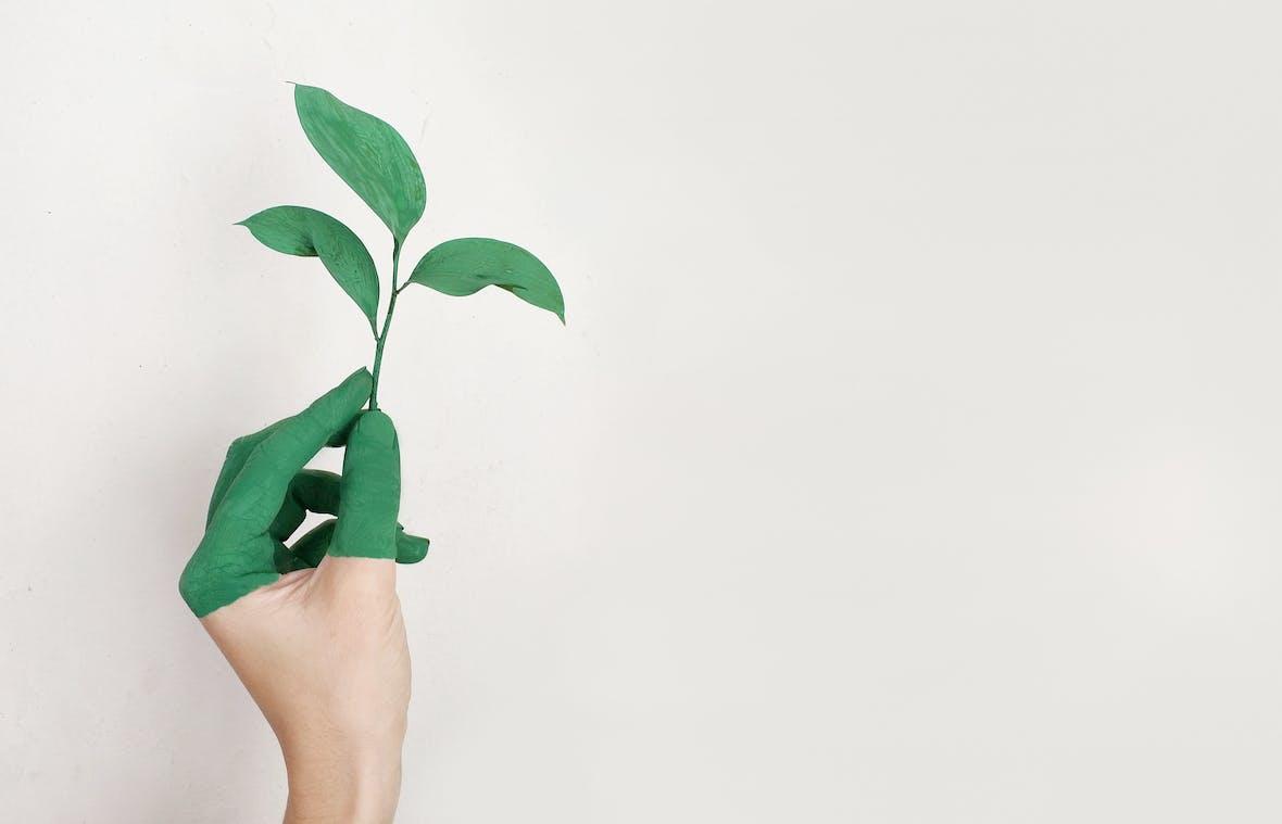 DAX 30: Nachhaltigkeitstest - Ausbruch geglückt