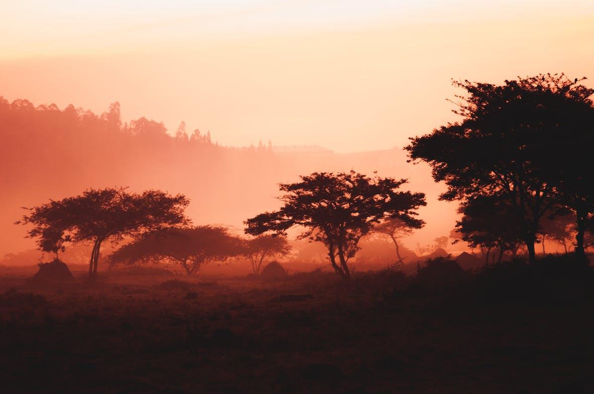 Afrikanisches E-Commerce-Startup Jumia startet Börsengang